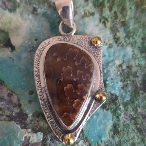Jewelry - Ammonite Sterling Silver Pendant